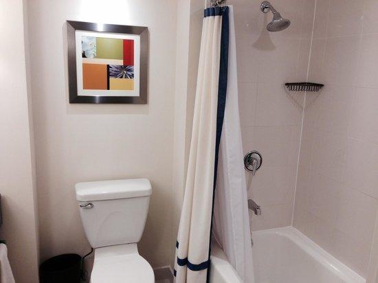 Renaissance Schaumburg Convention Center Hotel : bathroom shot 1