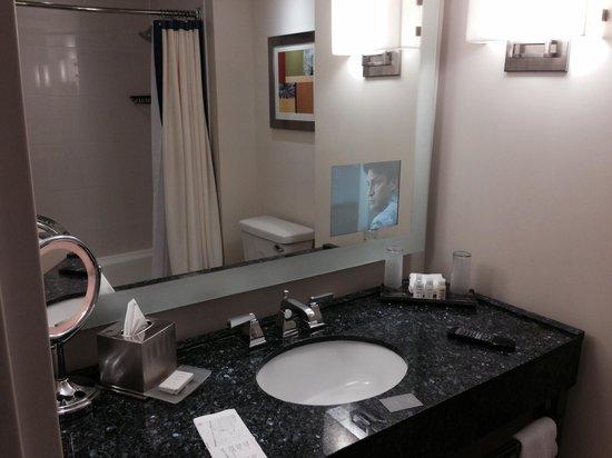 Renaissance Schaumburg Convention Center Hotel: Bathroom shot 2