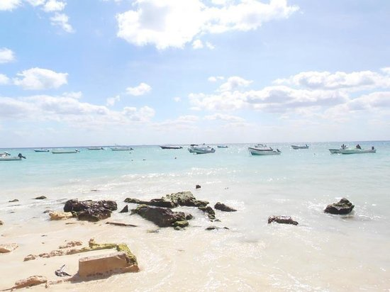 The Reef Coco Beach: It's great to wake up and see this in the morning