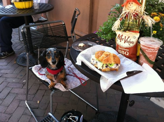 Smooth Cafe : Outdoor pet friendly dining