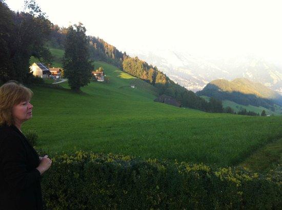 Hotel Villa Honegg: View toward lake