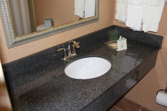 Holiday Inn Winchester Southeast-Historic Gateway: bathroom