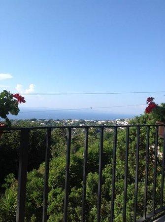 Alle Ginestre Capri Bed & Breakfast: terraza