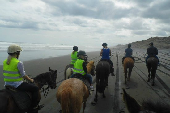 Muriwai Beach Horse Treks: Muriwai Beach