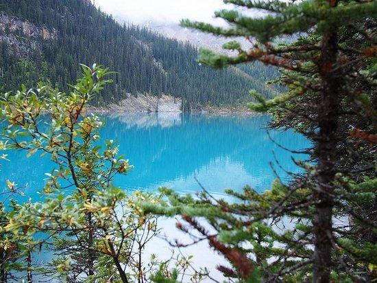 Moraine Lake Lodge: 部屋のデッキから