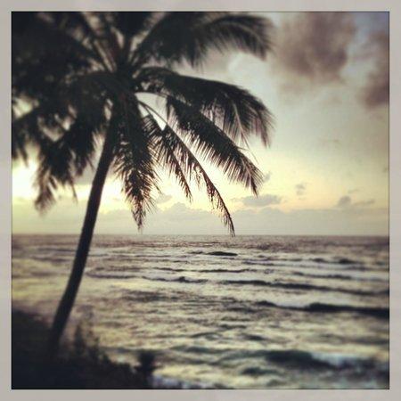 Wailua Bay View Condominiums: View from #214