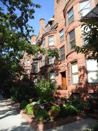 Gryphon House : Neighborhood of brownstone buildings