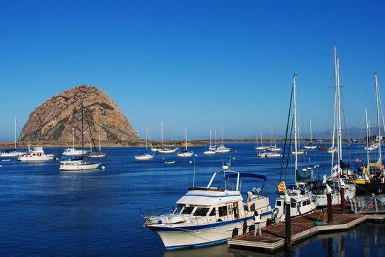 Estero Inn : Ocean View Suite