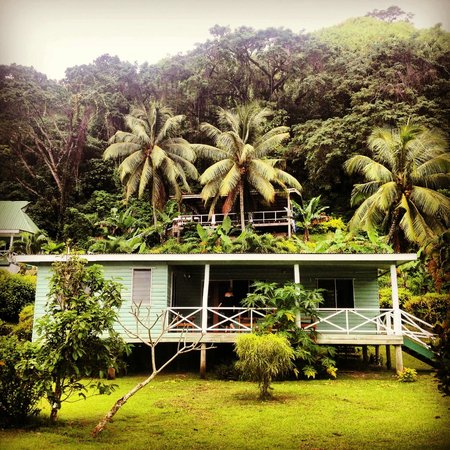 Daku Resort : View of the Cottage from the road with the Yoga Shala above!