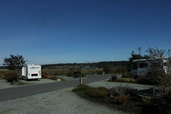 Oceanside RV Resort: campground