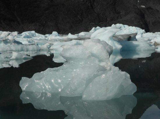 Kenai Fjords Glacier Lodge : Pedersen Upper Lagoon icebergs