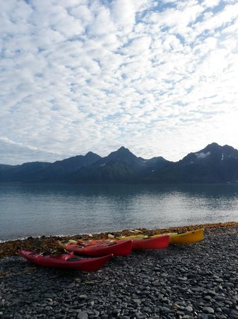 Kenai Fjords Glacier Lodge: Kayaks preparing for Aialik Glacier /Slate Island trip