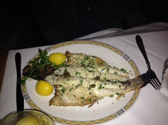 Kellari Taverna : peixe