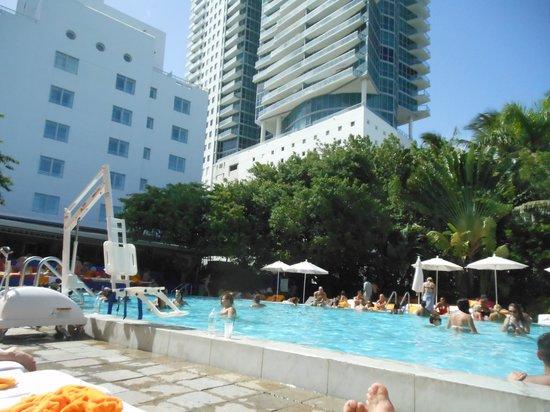 Shore Club South Beach Hotel: Main Pool
