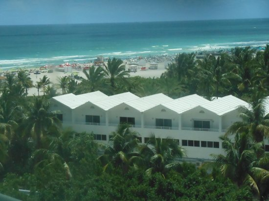 Shore Club South Beach Hotel: view from room