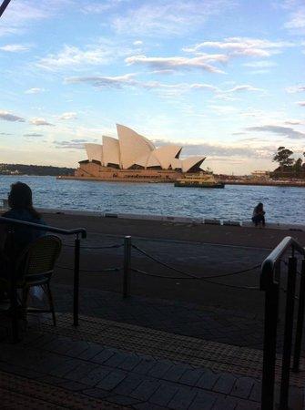 Wildfire Restaurant Sydney: The World Class View