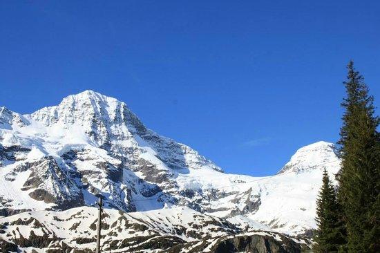 Berggasthaus Tschingelhorn: Alpine View