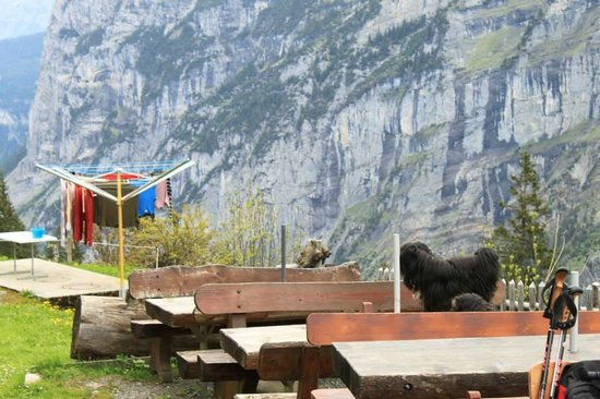 Berggasthaus Tschingelhorn: Outside tables - have a beer, a snack and a view!