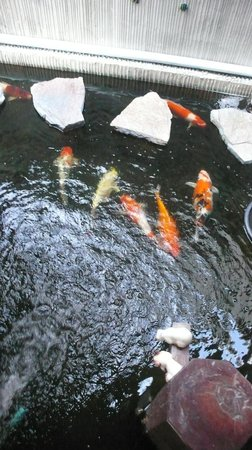 Baan Pa Ploy: 大廳魚池