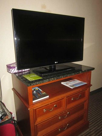 Hilton Garden Inn Palm Springs/Rancho Mirage: tv