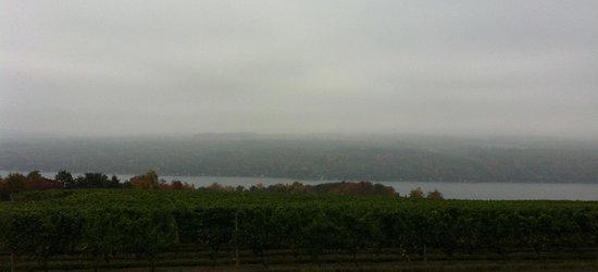 Dr. Konstantin Frank's Vinifera Wine Cellars: Overcast but still lovely -?