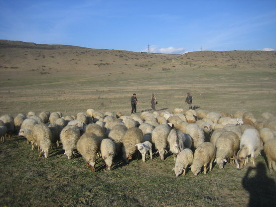 Lisi Lake: Friendly sheepherders pointed the way around the far end of the lake. The road was not completed