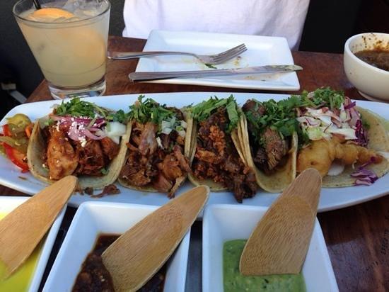 Tacolicious : mole, alambre, filet, carnitas and fish tacos. off da hook!