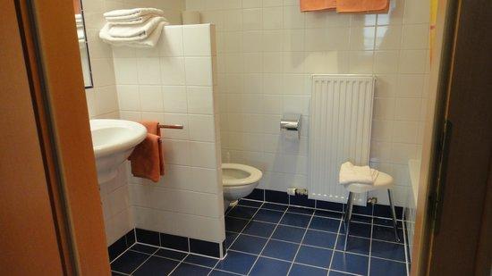 Hotel Lilienhof : Family room bathroom