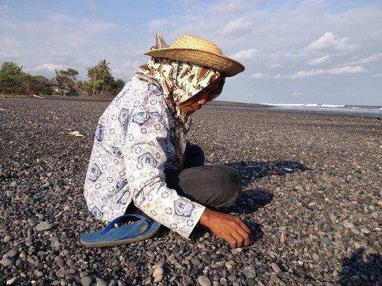 Villa Ylang Ylang: A stone picker