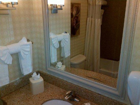 Hilton Garden Inn San Diego Del Mar: Bath room