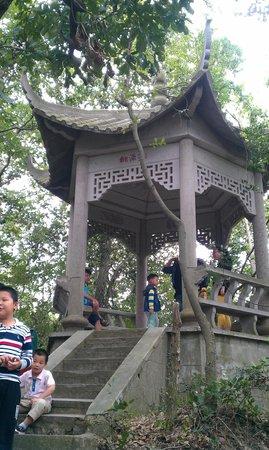Dongsheshan Park : 步道間的涼亭