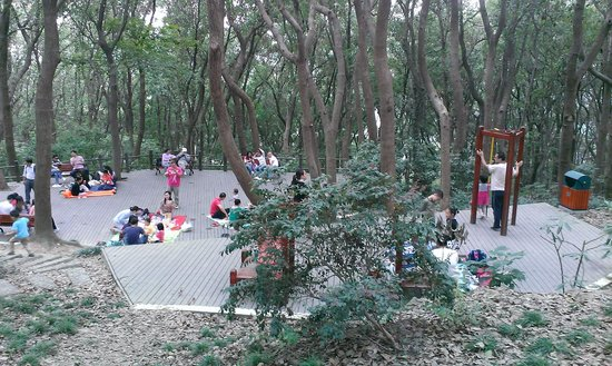 Dongsheshan Park : 山頂的休憩平台