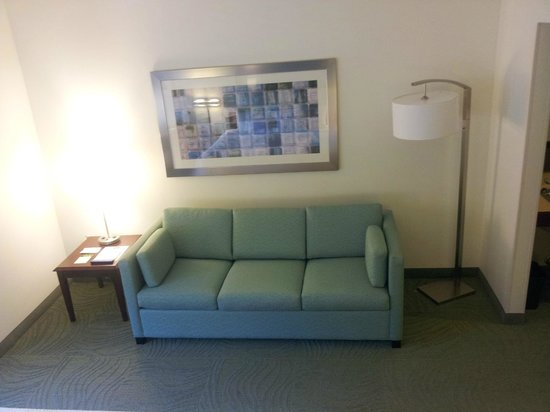 SpringHill Suites Raleigh-Durham Airport/Research Triangle Park: Sofa