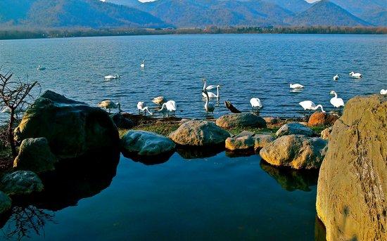 Lake Kussharo Sand Bath: コタン湯
