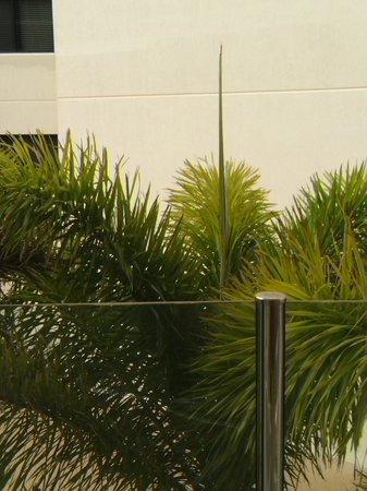 بارك ريجيس سيتي كوايز: View from balcony