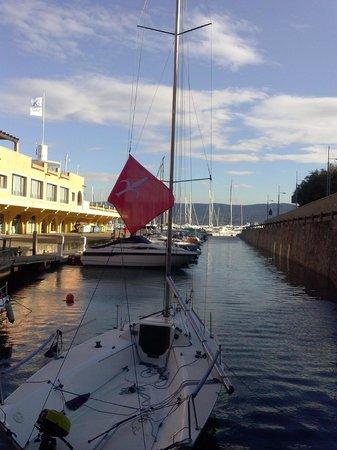 Hotel San Rocco: La marina proprio sotto l'albergo.