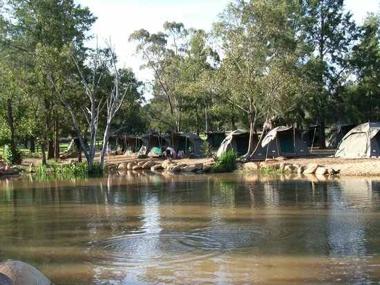 Dubbo, Avustralya: Billabong Camp Tents