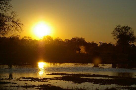 Machaba Camp: beautiful sunsets