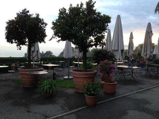 Sorell Hotel Zürichberg : Terrace