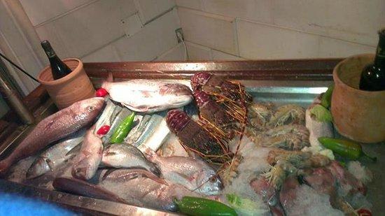 Le Lido : Vetrina del pesce