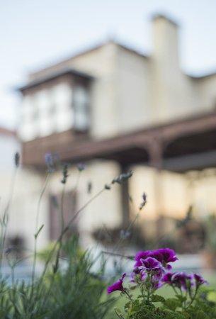 Sedirli Ev: our garden... waiting for you...