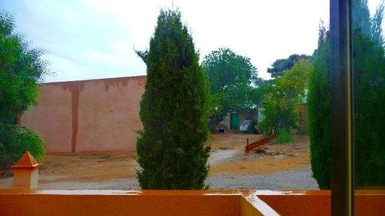 Lago Dorado : Panorama dalla camera: niente!