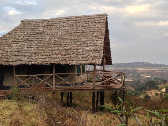 Rhotia Valley Tented Lodge : Accomodatie