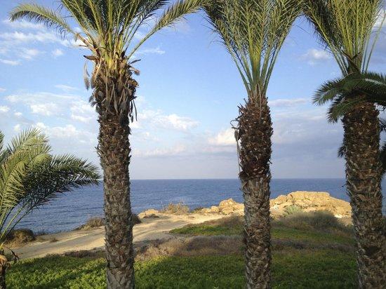 Queen's Bay Hotel: Peninsula from hotel garden