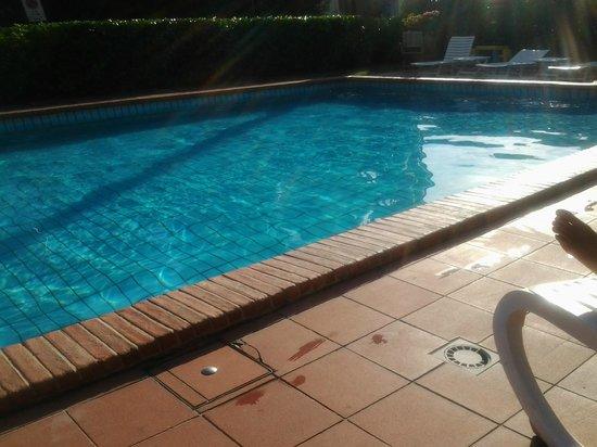 Hotel Michelangelo : piscina