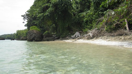 Mamaling Resort Bunaken: Strand