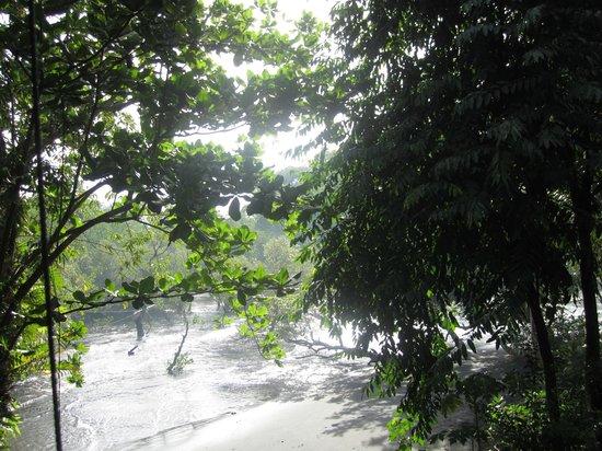 Mamaling Resort Bunaken: Hausstrand