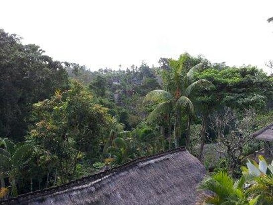 Hotel Tjampuhan & Spa: View from reception
