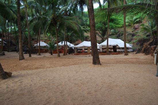 Soneca Cola Beach