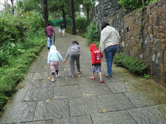 คลับมหินทรา โกดาคูแวลเลย์: Lovely walks